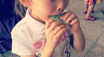 Photo of Art Museum 横浜美術館 こどものアトリエ (Children's Workshop) at 西区みなとみらい3-4-1, 横浜市 220-0012, Japan