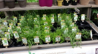 Photo of Garden Center Intratuin at Nobelweg 10, Amsterdam 1097 AR, Netherlands