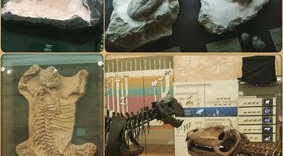 Photo of Science Museum Музей естественной истории Татарстана at Кремль, 12, Казань 420014, Russia