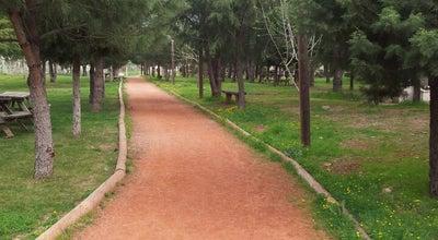 Photo of Trail Yenişehir Yürüyüş ve Koşu Yolu at Yenişehir, Denizli, Turkey