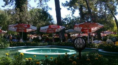 Photo of Tea Room Milas Belediyesi Çay Bahçesi at Turkey