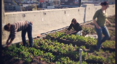 Photo of Farm Brooklyn Grange Rooftop Farm at 37-18 Northern Blvd, Long Island City, NY 11101, United States