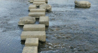 Photo of Water Park 荒神橋北側の亀石 at 上京区亀屋町/左京区吉田下阿達町, 京都市, Japan