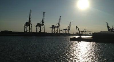 Photo of Harbor / Marina Port of Rotterdam at Wilhelminakade, Rotterdam, Netherlands