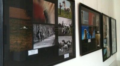 Photo of Art Gallery Foto, kino i video savez Vojvodine at Nikole Pašića 34, Novi Sad 21000, Serbia