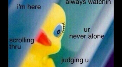 Photo of Lake lake bradford at Tallahassee, FL 32310, United States