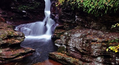 Photo of Park Ricketts Glen State Park at 695 State Route 487, Benton, PA 17814, United States
