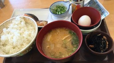 Photo of Diner すき家 9号大田店 at 103-3, 大田市長久町土江 694-0044, Japan
