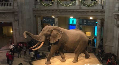 Photo of Science Museum Kenneth E. Behring Family Rotunda - Smithsonian's National Museum of Natural History at Lenfant Plz Sw, Washington, DC 20560, United States