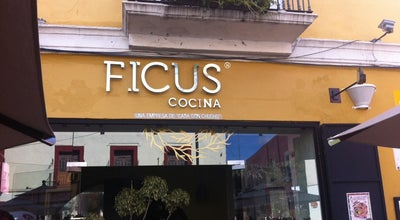 Photo of French Restaurant Ficus at Mexico