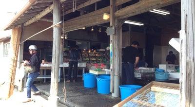 Photo of Fish Market 小坪漁港 谷亀 at 小坪4-5-1, 逗子市 249-0008, Japan