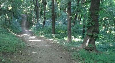 Photo of Park Парк ім. Ю. Федьковича at Вул. Главки, Чернівці 58000, Ukraine