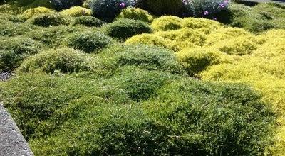 Photo of Garden Evergreen Arboretum And Garden at 145 Alverson Blvd, Everett, WA 98201, United States