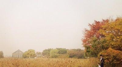 Photo of Park 시화호갈대습지공원 at 상록구 해안로 820-96, 안산시 426-172, South Korea