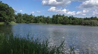 Photo of Lake Чесменский (Большой) пруд at Екатерининский Парк, Санкт-Петербург, Russia