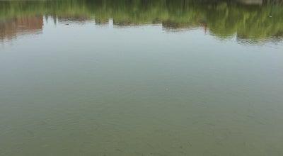 Photo of Lake 思源湖 | Lake Siyuan at 上中下院旁,南洋西路, 上海, 上海 200240, China