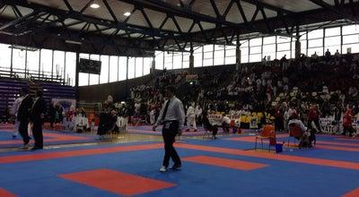 Photo of Basketball Court Palasport Flaminio at Via Flaminia, 67, Rimini 47923, Italy