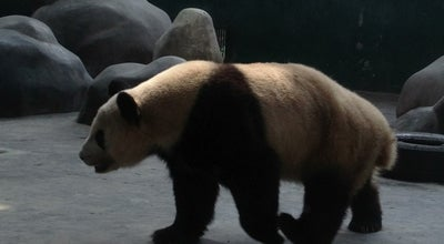 Photo of Zoo 成都动物园 at 234 Zhaojuesi South Rd., Chengdu, Si, China