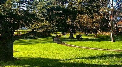 Photo of Park Ashburton Park at Australia