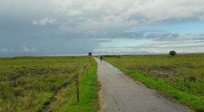Photo of Trail Promenaad at Pärnu Promenaad, Estonia