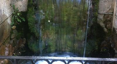 Photo of Lake Стеклянная струя и Зеркальный пруд at Курортный Парк, Кисловодск 357700, Russia
