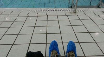 Photo of Pool Zwembad De Houtzagerij at Hobbemastraat 93, Den Haag, Netherlands