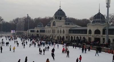 Photo of Skating Rink Városligeti Műjégpálya at Olof Palme Sétány 5., Budapest 1146, Hungary