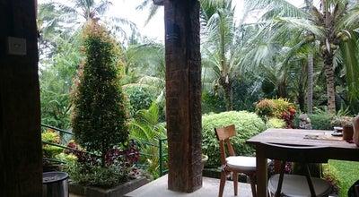 Photo of Indonesian Restaurant Warung Pulau Kelapa at Jl. Raya Sangingan, Ubud, Indonesia