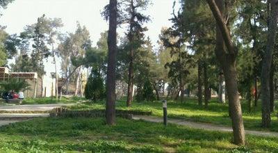 Photo of Park Άλσος Νέας Σμύρνης (Nea Smirni Grove) at Ελευθερίου Βενιζέλου, Νέα Σμύρνη 171 21, Greece
