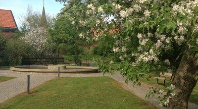 Photo of Park Lövegrenska Trädgården at Sankt Petri Kyrkogata, Lund, Sweden