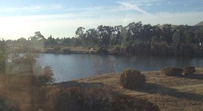 Photo of Lake Shinn Pond at Fremont, CA 94536, United States
