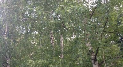 Photo of Library Ульяновская областная библиотека для детей и юношества имени С.Т. Аксакова at Ул. Минаева, 48, Ульяновск, Russia