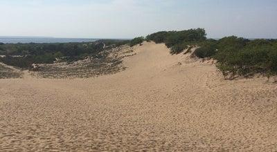 Photo of Beach The Walking Dunes at Montauk, NY 11954, United States
