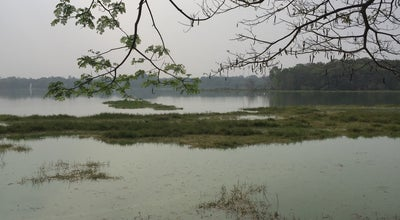Photo of Lake Kukkarahalli Lake at India