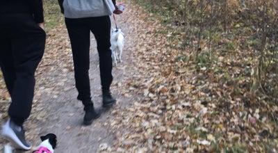 Photo of Trail Katariinanlaakson luontopolku at Ansarikatu, Finland