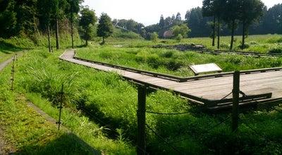 Photo of Lake 中池見湿地 at Japan