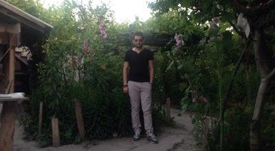 Photo of Botanical Garden Savaş Çiftliği at Turkey