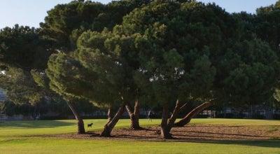 Photo of Playground Montague Park at 3595 Macgregor Ln, Santa Clara, CA 95054, United States