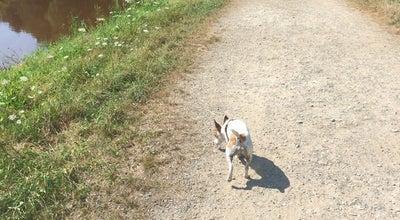 Photo of Trail Netedijk at Belgium