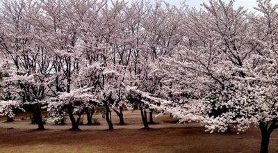 Photo of Park 一ノ割公園 at 一ノ割4-14, 春日部市, Japan