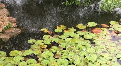 Photo of Lake 流徽榭(水榭) at Linggusi Rd., Nanjing, Ch, China