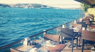 Photo of Cafe Paşalimanı Kafe at Fethi Paşa Korusu Altı, Paşalimanı, Üsküdar, Turkey