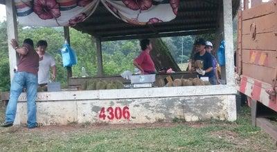 Photo of Farmers Market Musang King Durian Station at Balok, Malaysia
