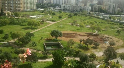 Photo of Park Parco Uditore at Via Uditore, 90145 Palermo, Palermo 90145, Italy