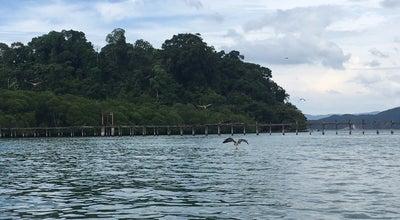 Photo of Beach Eagle's Feeding Place at Pulau Singa Besar, Langkawi, Malaysia