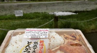 Photo of Lake 深泥池 at 北区上賀茂狭間町, 京都市, Japan