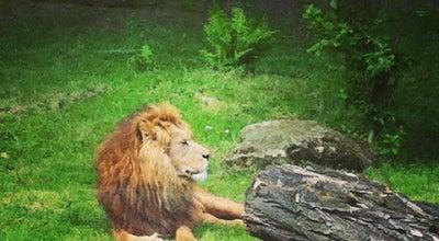 Photo of Zoo GaiaZOO at Dentgenbachweg 105, Kerkrade 6468 PG, Netherlands
