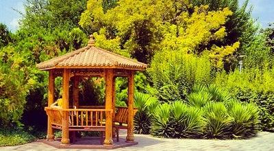 Photo of Park Laleh Park | پارک لاله at North Karegar St., Tehrān, Iran