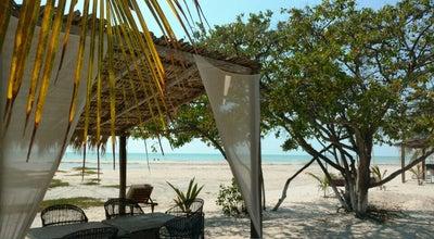 Photo of Beach Tortugueros Beach Club at Carretera Carmen Puerto Real, Mexico