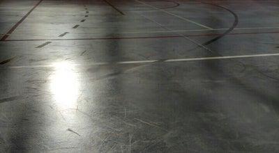 Photo of Basketball Court Sportazale 'Celtnieks' at Skolas Iela 15, Ogre, Latvia